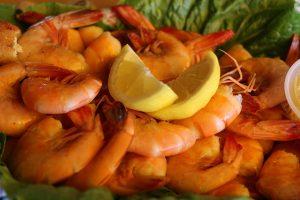 Gulf Seafood Gala